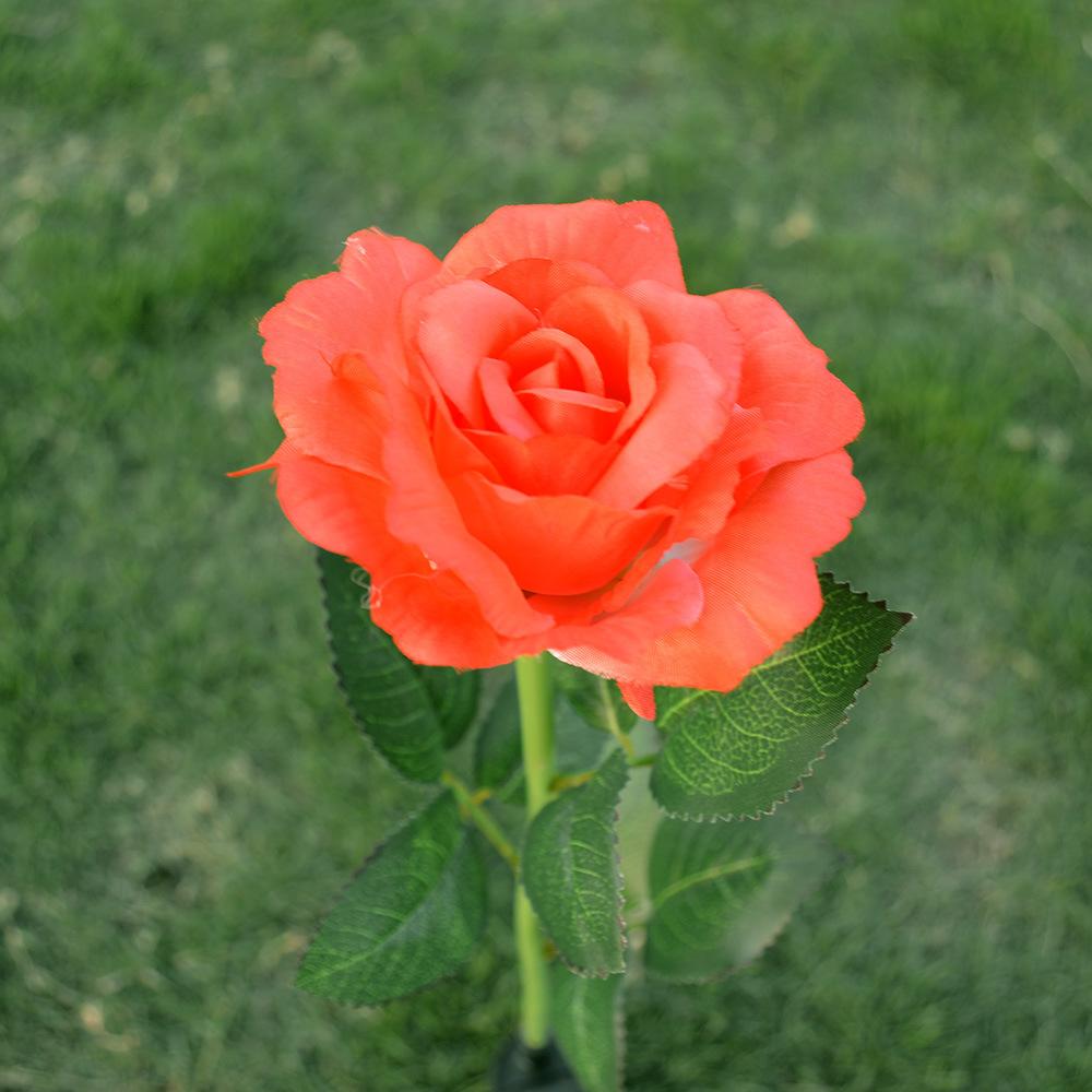 Outdoor Solar Rose Flower Lights,Solar Powered LED Stake Light (Red)