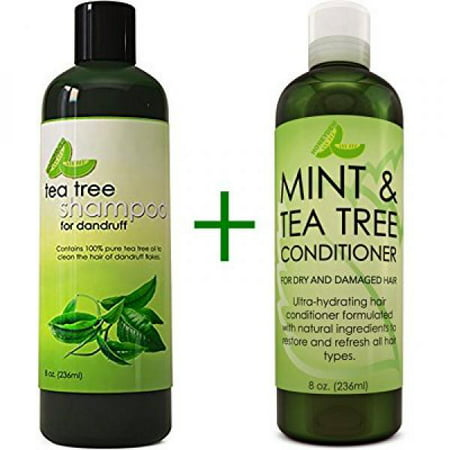 Dandruff Shampoo and Conditioner with Tea Tree Oil - Argan Oil Hair Growth Therapy - Lice Treatment for Kids - Hair Loss Products for Men Hair Loss Prevention for Women - With Lavender, Aloe &
