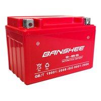 AGM YTX9-BS Battery For Honda TRX 125 250 300 400 700 EX 400EX Sportrax Fourtrax