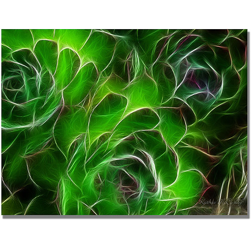 "Trademark Art ""Hens and Chicks"" Canvas Art by Kathie McCurdy"