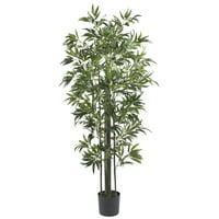 6' Bamboo Silk Tree (Green Trunks)