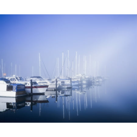 Docked boats on a foggy morning Winchester Bay Oregon United States of America Poster Print by Robert L Potts  Design - Good Morning America Halloween Pics