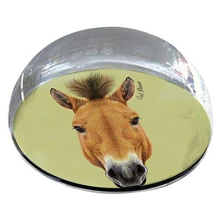 forever crystal horse head pet memorial magnet
