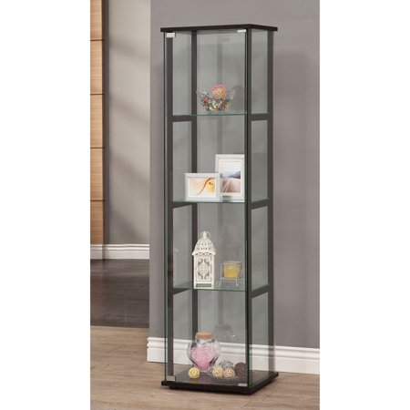 Glass Steel Cabinet (Coaster Company Transitional Curio Cabinet; Black and Glass)