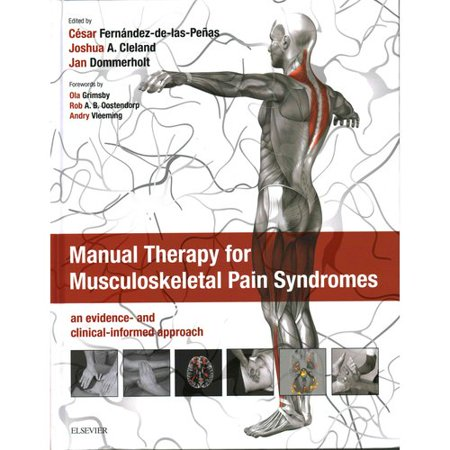 Manual Therapy For Musculoskeletal Pain Syndromes  An Evidence And Clinical Informed Approach