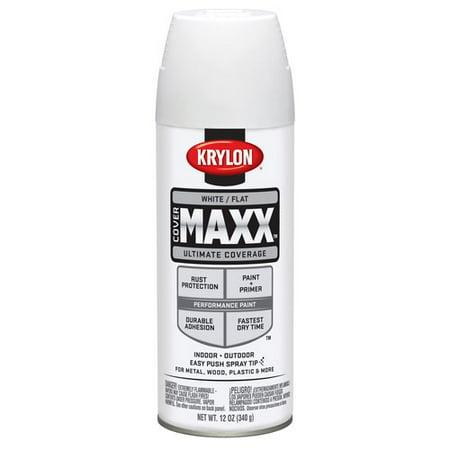 Krylon Spray Paint Clear Coat