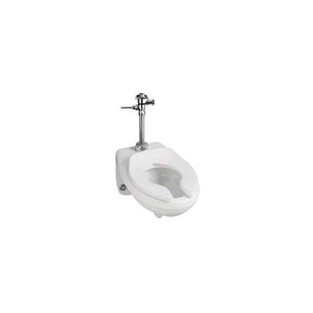 Mansfield Elongated Toilet (Mansfield Plumbing Products Erie Commercial Dual Flush Elongated One-Piece)