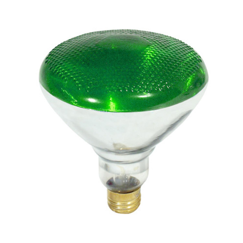 Green Incandescent Reflector Indoor/Outdoor Flood Light Lamp 100 Watt