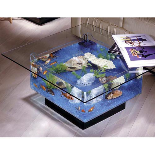Coffee Table Luxury 25 Gallon Aquarium Glass Fish Tank Stand Furniture  Coral NEW