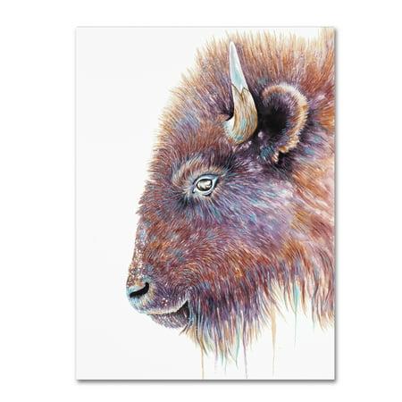 Trademark Fine Art 'Spirit Of The West Buffalo' Canvas Art by Michelle -