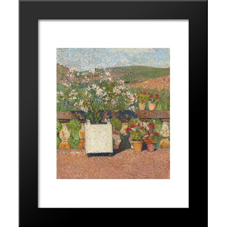 Roses and Geraniums on the Terrace at Marquayrol 20x24 Framed Art Print by Martin, -