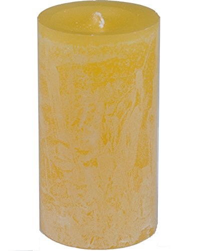 Vance Kitira Sand Dollar Luminary Candle Sand