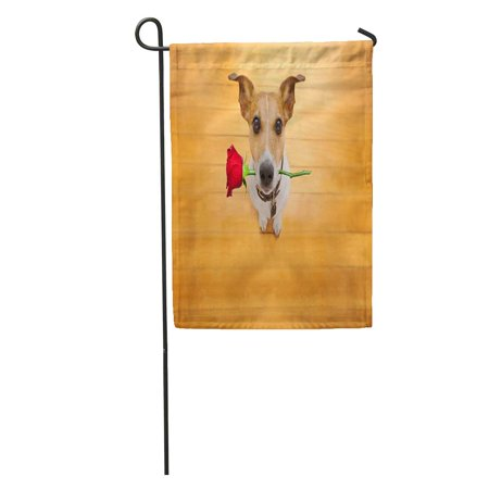 KDAGR Red Crazy Jack Russell Dog in Love on Valentines Day Rose Mouth Cool Gesture Wood Pet Garden Flag Decorative Flag House Banner 28x40 (Titanic Love Scene Jack And Rose In Car)