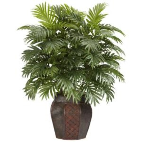 Click here to buy Areca Palm with Vase by Generic.