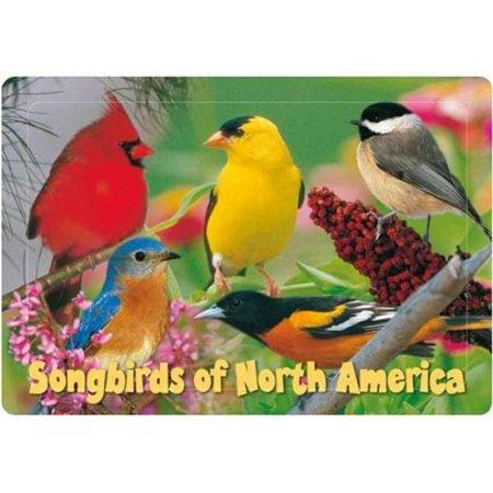 Impact Photographics IMP52855KZ Kids Puzzle Songbirds