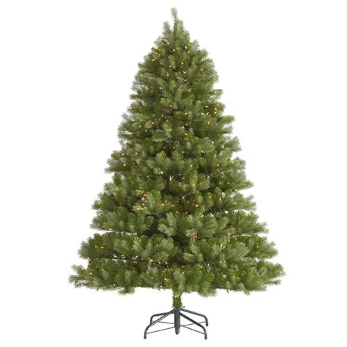 6.5' Pre-Lit Belvedere Spruce Artificial Christmas Tree - Clear Dura Lights