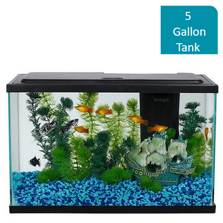 Aqua Culture 5-Gallon Fish Tank LED Aquarium Starter