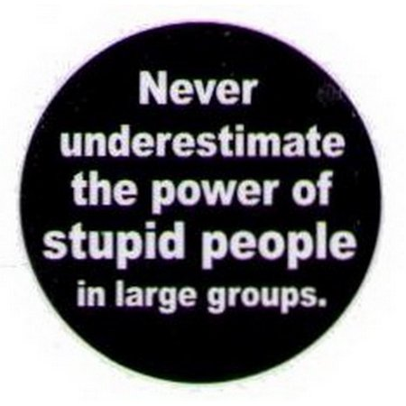 - Never Underestimate Stupid People Button HB288
