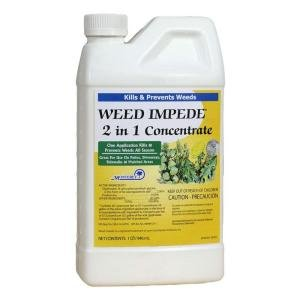 Monterey LG5540 Weed Impede 2 in 1 Concentrate Pint