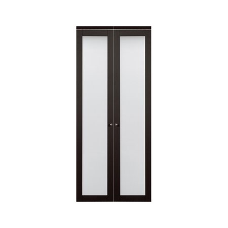 Erias Home Designs Baldarassario Wood 2 Panel Painted Bi-Fold ...