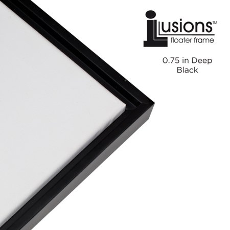 Floater Frame Picture Frame - Illusions Floater Frames - 3/4 Depth - Parent