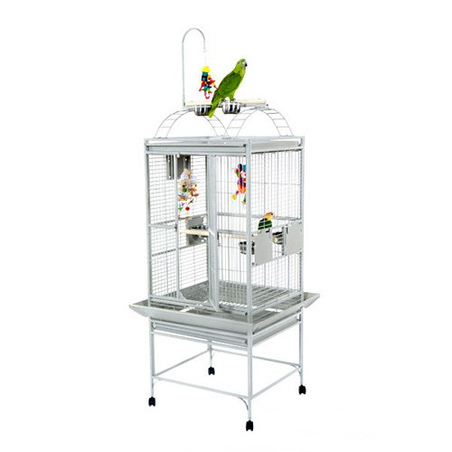 A and E Cage Co. Medium Playtop Bird Cage 8002422 by A and E Cage Co LLC