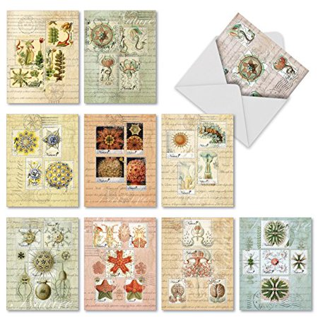 'M2353OCB VINTAGE NATURE' 10 Assorted All Occasions Notecards Featuring Antique Styled Postal Stamps on Collaged Background of Postcards and Maps with Envelopes by The Best Card Company