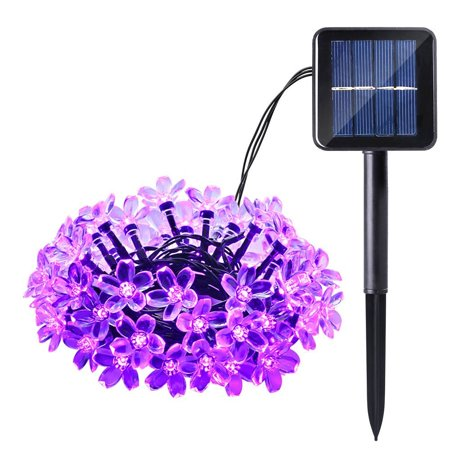 Qedertek 50 LED Solar Fairy String Lights Blossom Flower Decorative Light (Purple) - Walmart.com