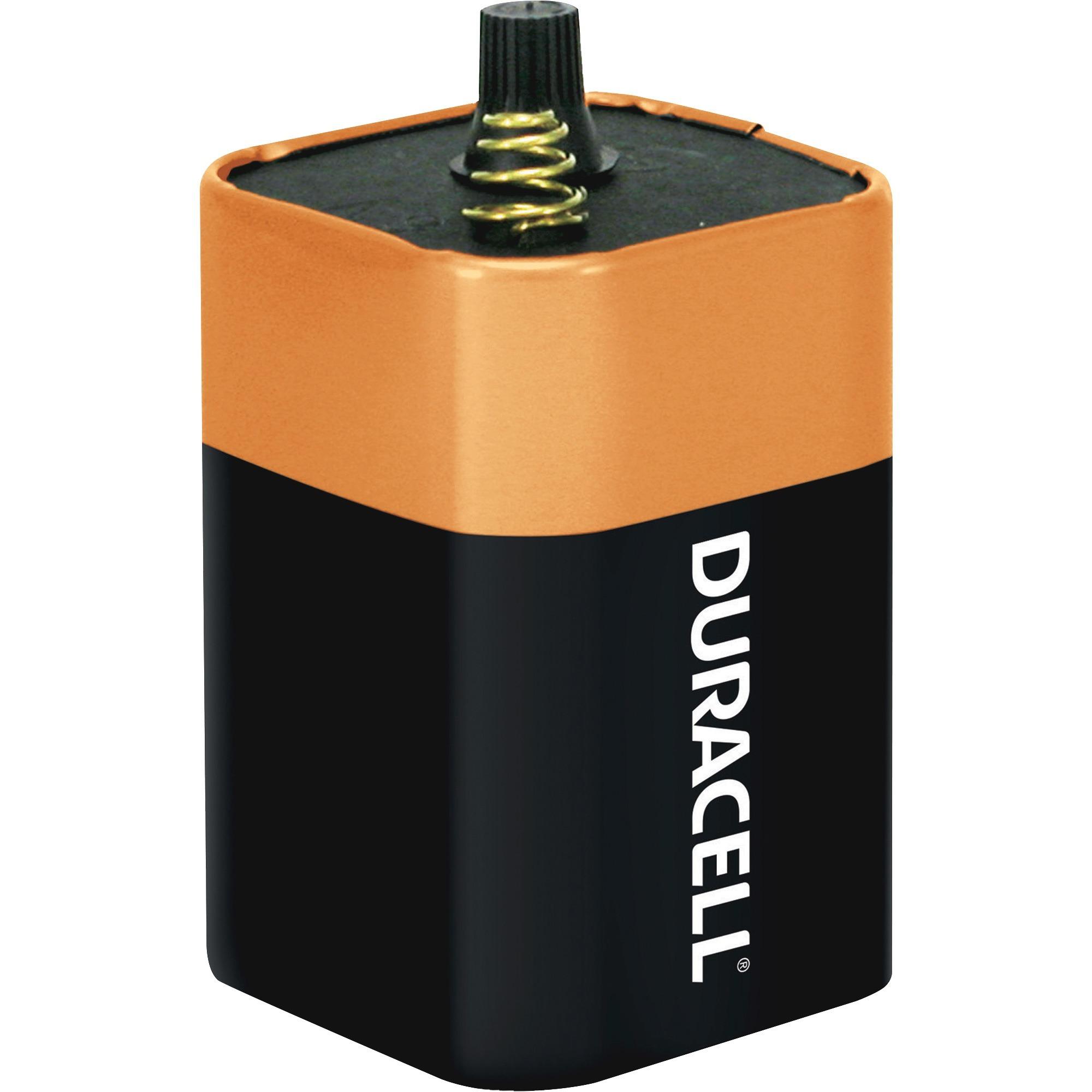 30 Pack Energizer Lantern Batteries Alkaline 6V 529 6 Volt Spring Flashlight