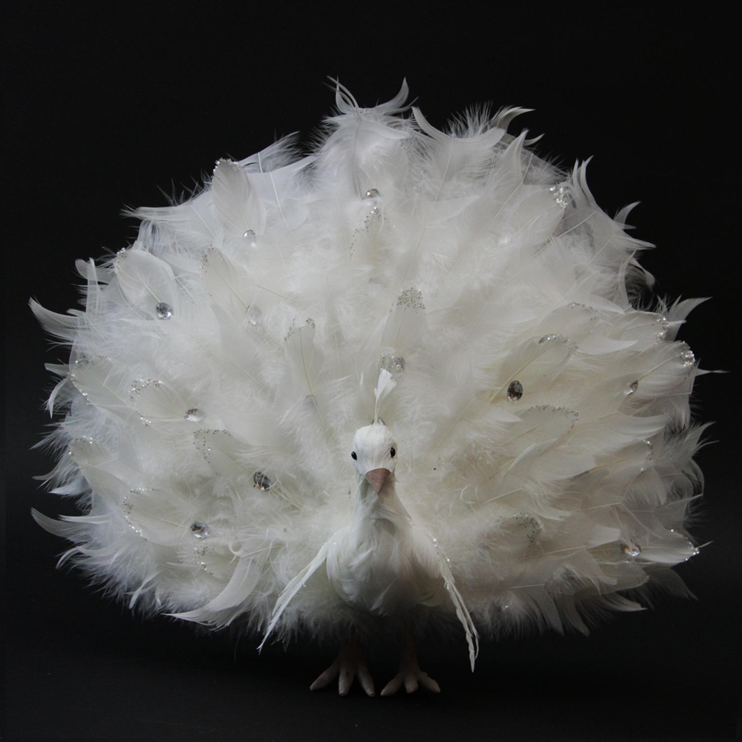 "15"" White Regal Peacock Bird with Open Tail Feathers Christmas Decoration"