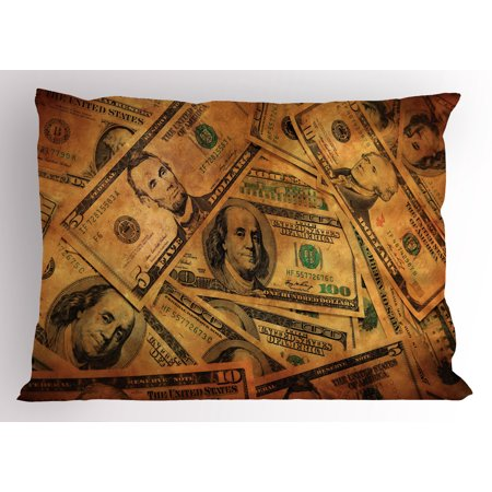 Money Pillow Sham Grunge Style Background With Fiver Sawbuck And Century Note Important Figures  Decorative Standard Queen Size Printed Pillowcase  30 X 20 Inches  Pale Green Brown  By Ambesonne