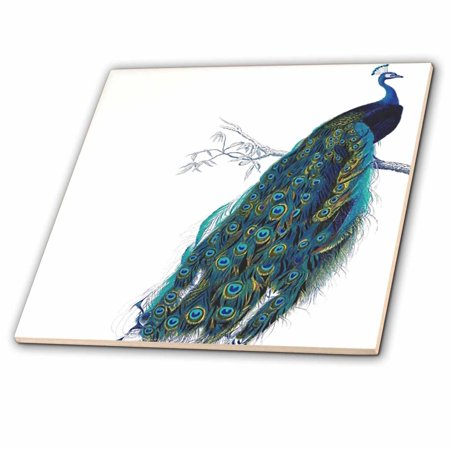 3dRose Vintage peacock art blue and green elegant stylish bird on bran