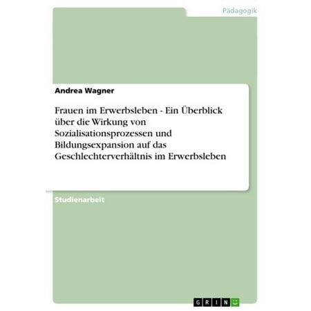 Frauen im Erwerbsleben - Ein Überblick über die Wirkung von Sozialisationsprozessen und Bildungsexpansion auf das Geschlechterverhältnis im Erwerbsleben - eBook (Flieger Auf Frauen)