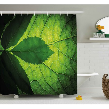 Green Decor Shower Curtain  Nature Forest Big Amazon Brazilian Tree Leaf With Vein And Sunbeams Image  Fabric Bathroom Set With Hooks  69W X 70L Inches  Olive Dark Green  By Ambesonne