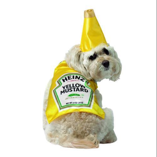 Heinz Mustard Bottle Pet Dog Costume Large