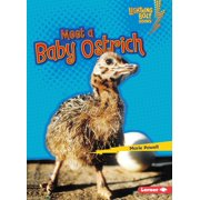 Lightning Bolt Books (R) -- Baby African Animals: Meet a Baby Ostrich (Paperback)