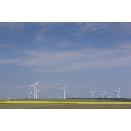 Romania, Danube River Delta, Bestepe, Farm Fields and Windmills Print Wall Art By Walter Bibikow