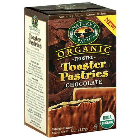 Toaster Pastries Organic Nature