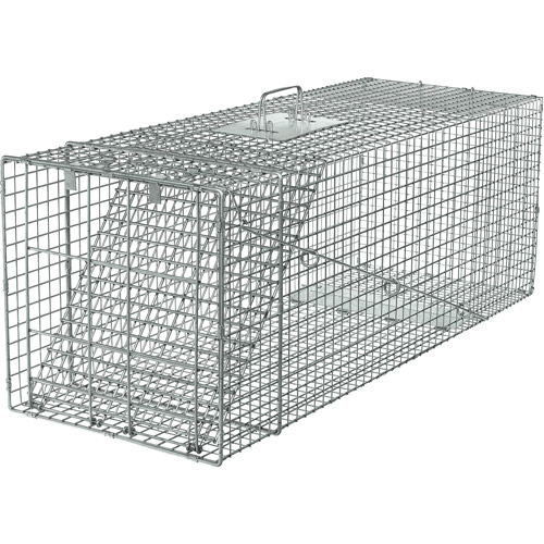 Havahart Live Animal Professional Style 1-Door Large Raccoon, Small Dogs and Fox Cage Trap