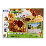 Ant Farm - Giant Version - Uncle Milton Scientific Educational Toy