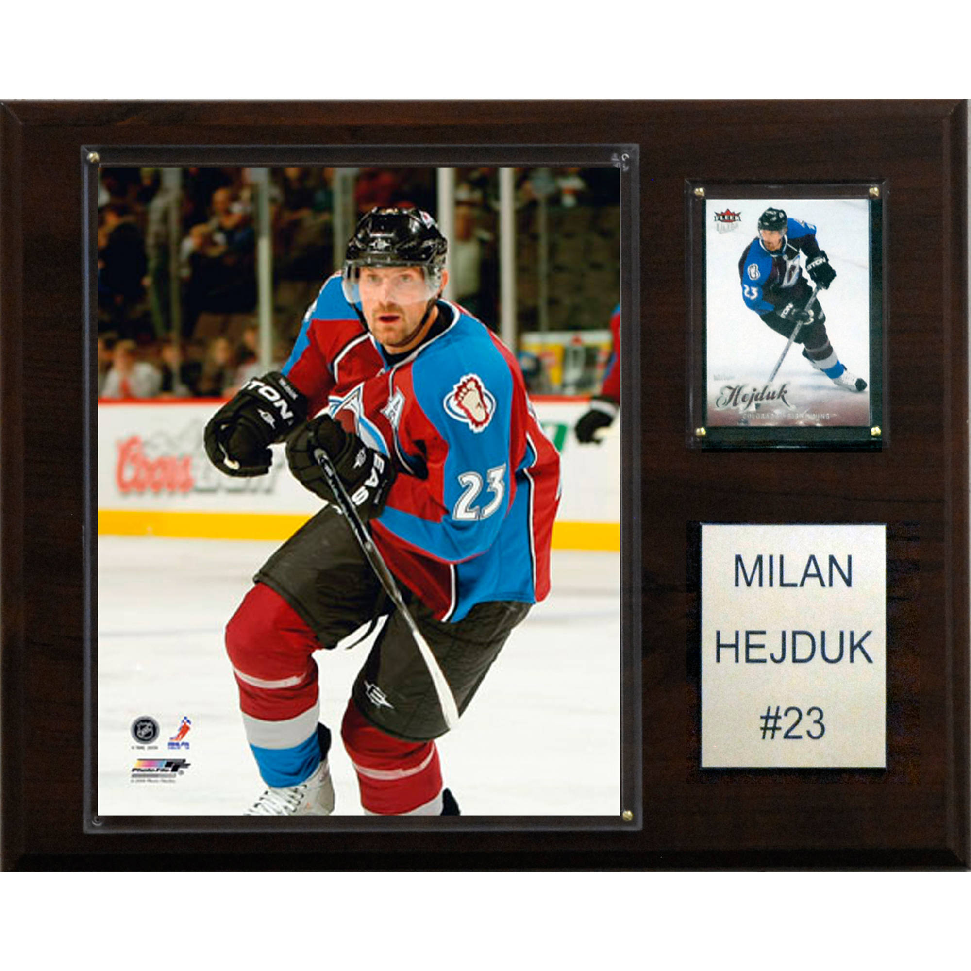 C&I Collectables NHL 12x15 Milan Hejduk Colorado Avalanche Player Plaque