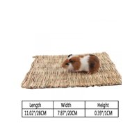 Topumt Pet Stainless Steel Plating Grass Rack Ball for Rabbit Guinea Pig Hamster Supplies
