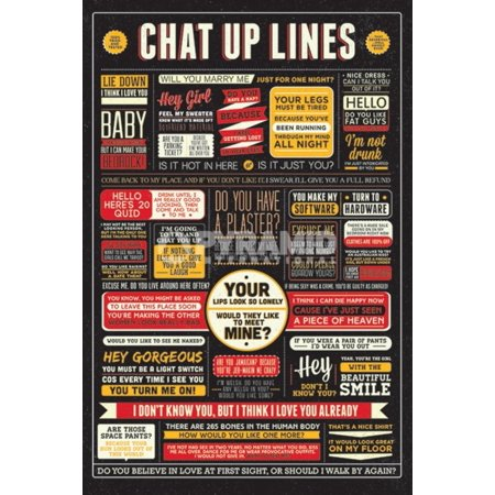 Chat Up Lines Cheesy Humorous Pick Up Lines Poster - 24x36 inch](Ginger Pick Up Lines)