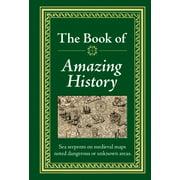Amazing History (Hardcover)