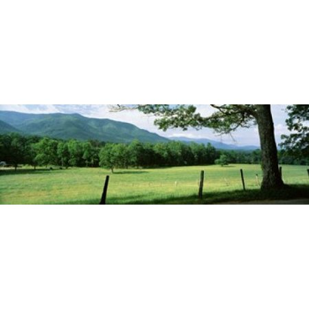 Meadow Surrounded By Barbed Wire Fence Cades Cove Great Smoky Mountains National Park Tennessee USA Poster Print