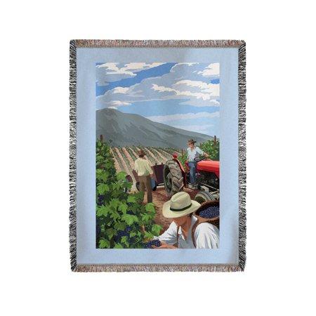 Wine Grape Harvest   Lantern Press Artwork  60X80 Woven Chenille Yarn Blanket