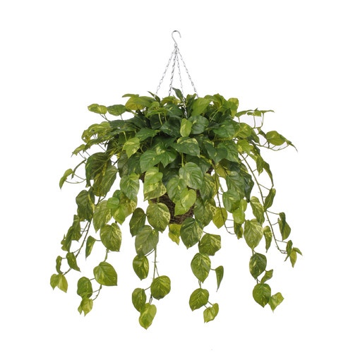 House of Silk Flowers Inc. Artificial Real Touch Pothos Hanging Plant in Square Basket