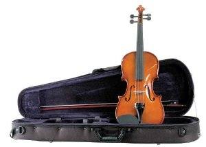 Palatino VN-450 Allegro Violin Outfit, 4 4 Size Multi-Colored by Palatino