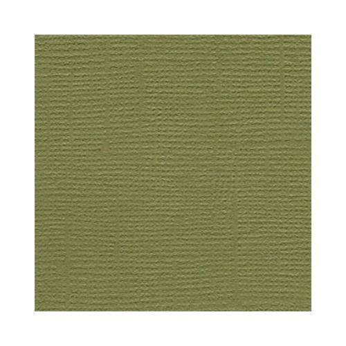 "Bazzill Cardstock 12""X12""-Palo Verde/Grass Cloth"