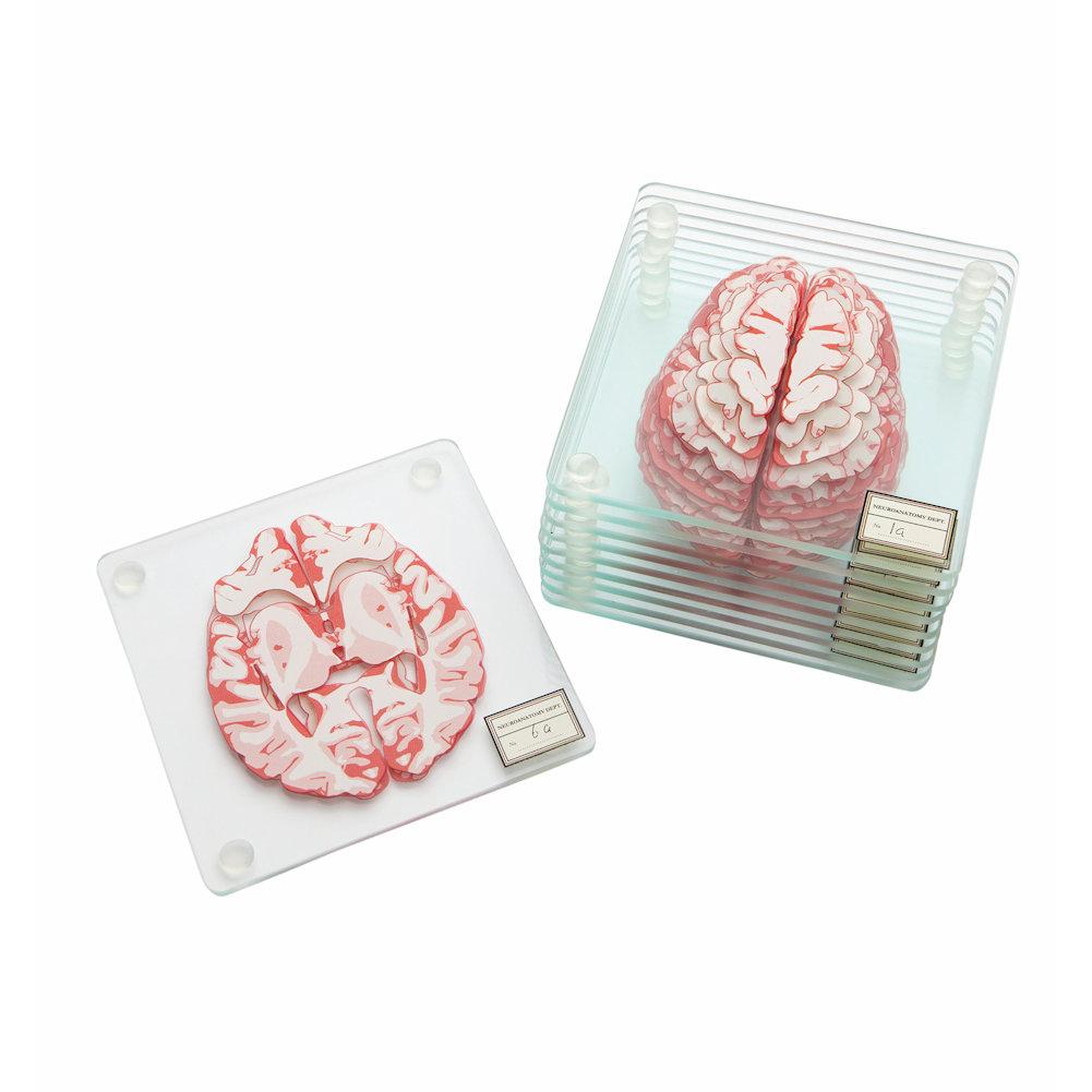 Brain Specimen Glass Coasters Set Of 10 by ThinkGeek, Inc.
